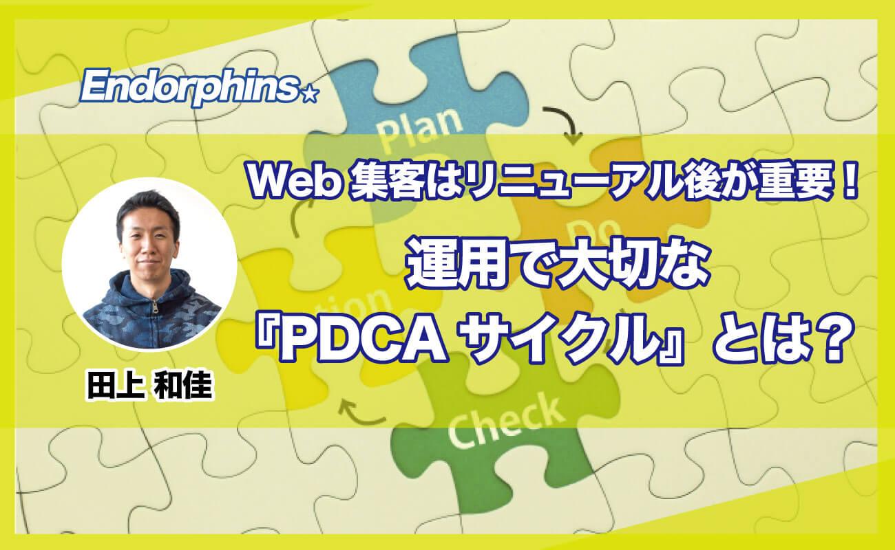 Web集客はリニューアル後が重要!運用で大切な『PDCAサイクル』とは?サムネイル